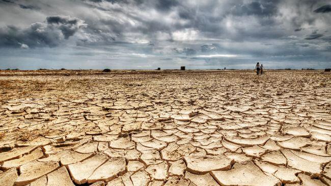 Gıda örgütleri: Sekiz ülkede kıtlığa yönelik tehditler kriz seviyesine ulaştı