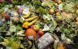 Türkiye'de yılda 214 milyar liralık gıda israfı yapılıyor