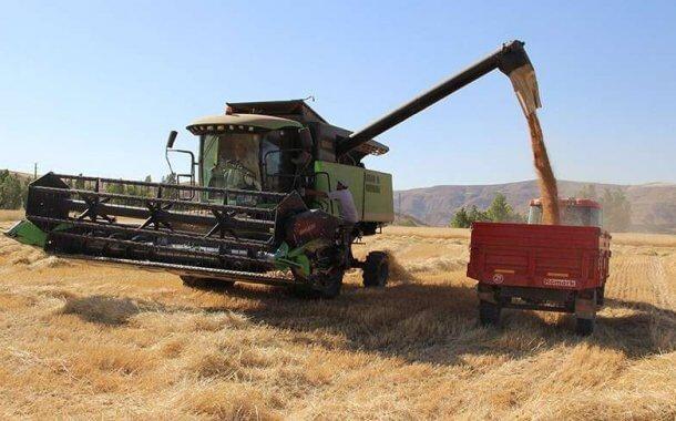 Buğday Ve Un Üretiminde Söz, Türkiye'nin!
