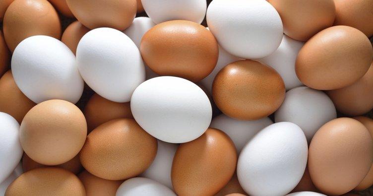 'İlaçlı yumurta' raporu yayımlandı