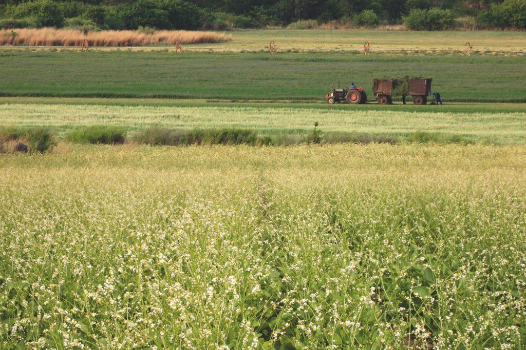 Clariant, Dünya Çiftçiler Günü'nü tarım sektörüne yönelik yenilikçi çözümleriyle kutluyor