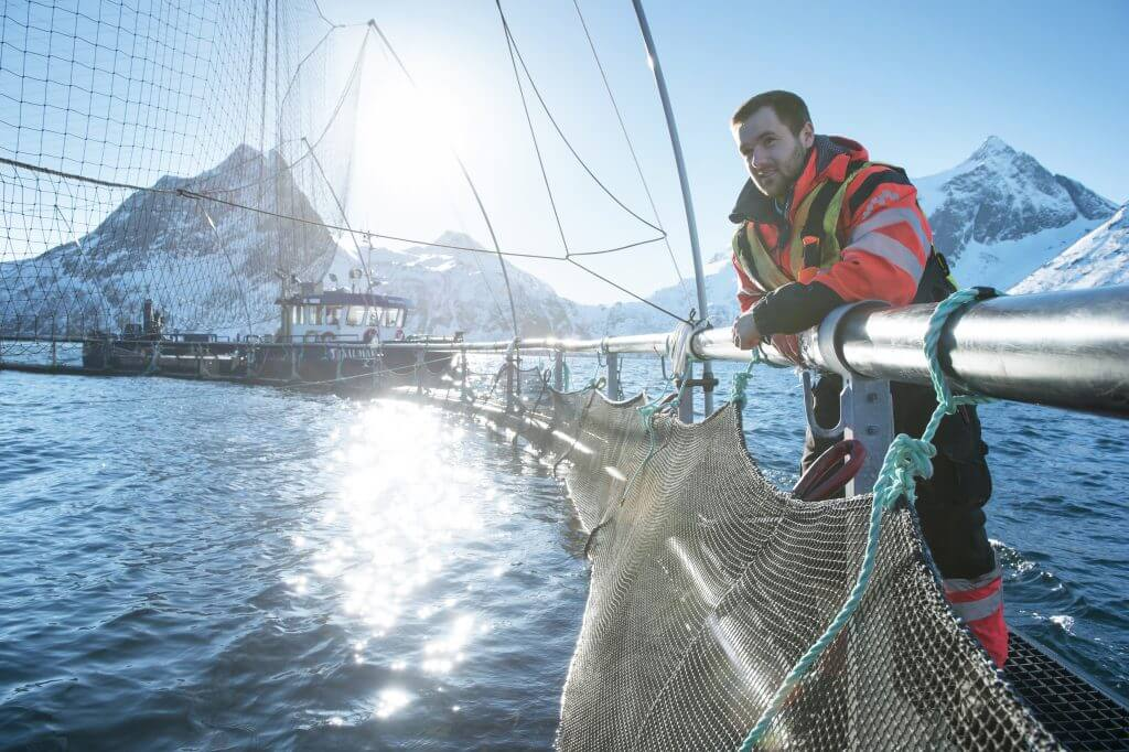 Deniz Ürünleri Tüm Dünyayı Doyurabilir