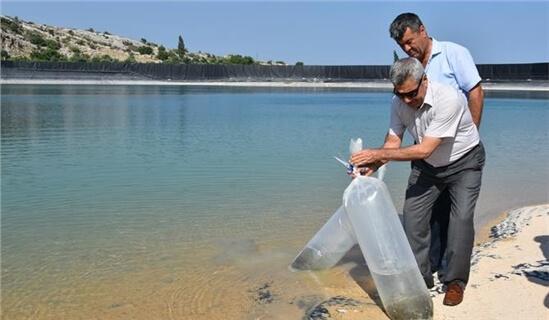 Su Kaynaklarının Balıklandırılması Projesi' kapsamında, Ayaş Lütfi Elvan Sulama Göletine 20 bin adet sazan balığı bırakıldı