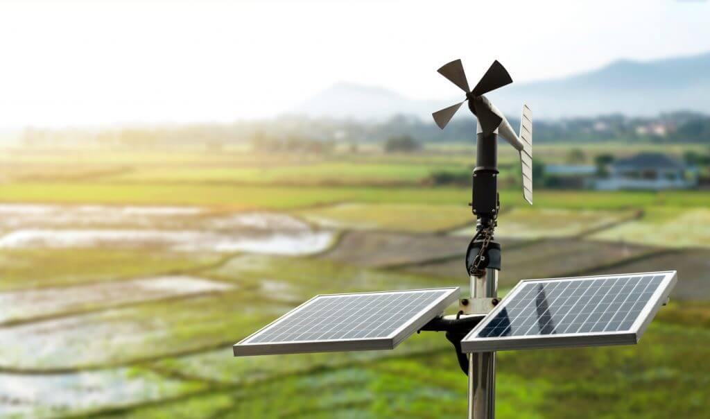 Zeytinden Elde Edilen Verim Akıllı Tarım Teknolojileri İle Artıyor
