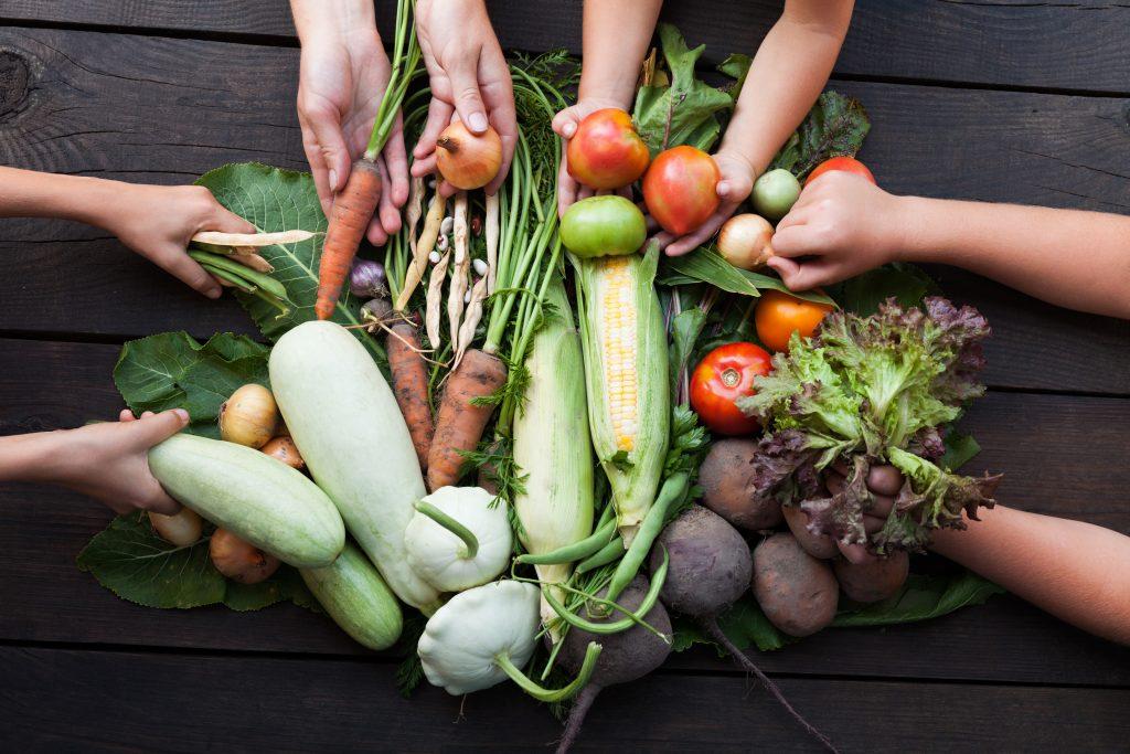 Yetersiz Beslenmenin Önüne Geçmek İçin Yeni Tartışma: Sürdürülebilir Beslenme Yolları