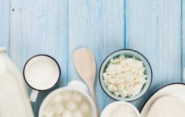 Karma Grup Süt Ürünleri Üretiminde Küf, Yabancı Madde ve Faj Yönetimi Eğitimi