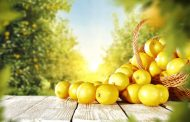 Yakıcı sıcaklarda sağlıklı limonata tarifi ile…