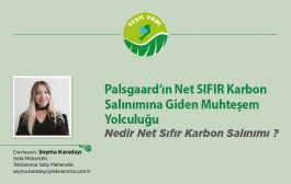 Palsgaard'ın Net SIFIR Karbon Salınımına Giden Muhteşem Yolculuğu