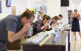 Karma Grup Tüketici tercih testleri ve pazar araştırması arasındaki temel fark nedir?
