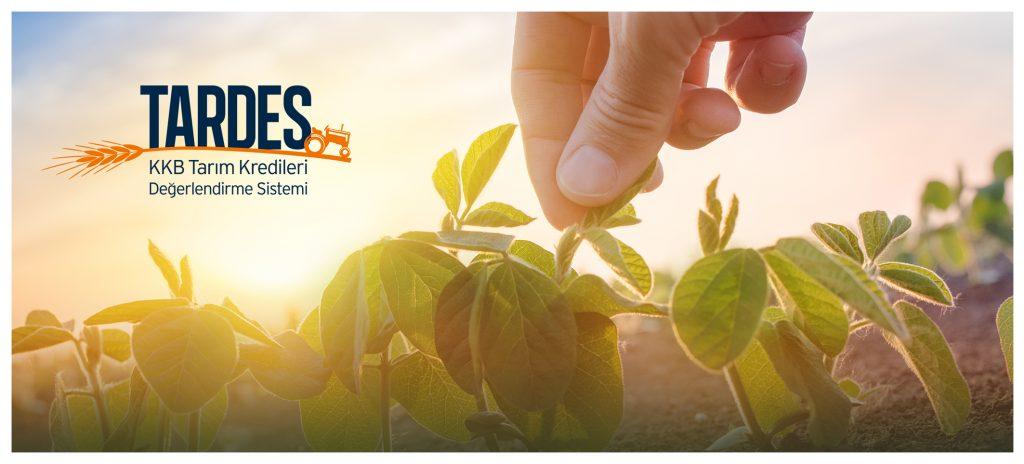KKB, koronavirüs salgınının tarım ve gıda sektörüne etkisini mercek altına alıyor
