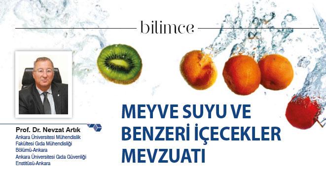 Meyve Suyu ve Benzeri İçecekler Mevzuatı
