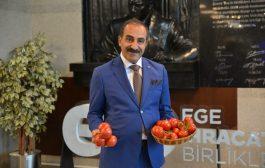 Rusya'ya Türk domates ihracatında kota 50 bin ton arttırıldı
