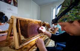 Balparmak ve İstanbul İli Arı Yetiştiricileri Birliği İstanbullu Arıcıların Yanında