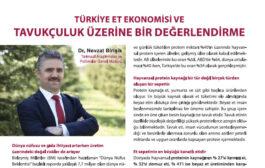 Türkiye Et Ekonomisi ve Tavukçuluk Üzerine Bir Değerlendirme